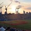 【観戦記】20160806東京ヤクルトスワローズ対阪神タイガース