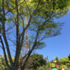 福岡県 「古賀グリーンパーク」