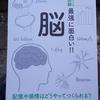 書籍紹介:ニュートン式 超図解 脳