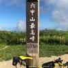 Tern Surge PROで六甲山ライド