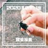【2020、夏の思い出】子どもと行く昆虫採集-ホームグラウンドに行くもクワガタ・カブトムシは…