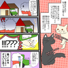 【絵日記】会社近くの猫さん