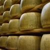 パスタにつかうパルミジャーノチーズとは?