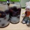 果物で手作り!プルーン酒を作ったよ