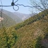 3月 秩父多摩甲斐国立公園 川苔山へ