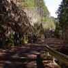 旧大塔村の簾地域の山道