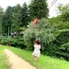 (前編)丹波篠山渓谷の森公園でオートキャンプ [7月下旬]