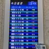 【⑤-4超低コスト!JALステータス修行】RAC琉球エアコミューターで行く日本最西端・与那国島〜日本最後の夕日が見える丘を目指して〜