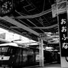 貨物列車、東海道旅客線迂回運転