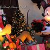 クリスマス・ファンタジーのフォトロケーション*2017年12月