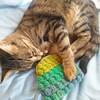【猫と毛糸2】がま口完成したよ。裏地もつけたよ。