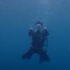 【体験レポート】ダイビングしてマイル獲得 ~熱海 初島~