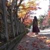 高野山一人旅でみた秋を忘れない
