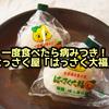 クセになる美味しさ!はっさく大福 | 広島県アンテナショップで常に売上ナンバーワン!