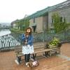 北海道:小樽・札幌・旭川・美瑛・上富良野