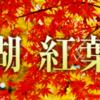 相模湖の紅葉