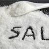 「自分自身のうちに塩気を」マルコ9章38〜50節