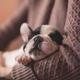 母親流の薬を飲まない風邪の治し方・風邪対策