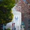 ミニチュア風写真『桜咲く竹橋』