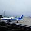 ANAビジネスクラス特典航空券でイタリアに行ってきた!(帰ってきた)⑳成田空港アライバルラウンジ&【おまけ】ロンドンヒースロー空港ユナイテッドラウンジ
