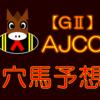 【GⅡ】AJCC 結果