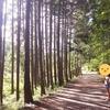 初心者キャンプ。飯地高原テント村へ行ってきました。