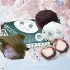 【元料理長が解説】春は和菓子が熱い!福岡で大人気の老舗和菓子店「駒屋」