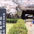桜満開の旧吉田家住宅歴史公園でお写ん歩!
