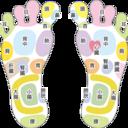 子供の足から大人の足まで 足のことなら「アシペディア」