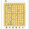 実践詰将棋⑨ 11手詰め
