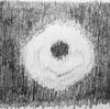 ニュースで英語術 「世界初 ブラックホールの撮影に成功」