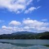京都 北嵯峨の田んぼは緑の絨毯になっていました!緑色のリラックス効果とは?