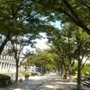 淀屋橋の府立図書館と大阪市中央公会堂