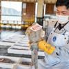 2021年5月10日 小浜漁港 お魚情報