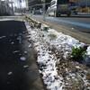 新潟市積雪あり
