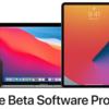 【解決】iOS14.2Beta以降からiPhone12にデータ移行する方法