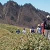 【登山】グループ登山を計画!~みんなで安全に登山しましょう~