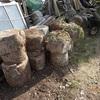 薪割りのコツ 後2回位 Tips for splitting firewood