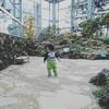 【1歳4ヶ月】子連れで『咲くやこの花館』へ行ってきた