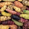 Meyve ve Sebzelerde B12 Vitamini Bulunur Mu?