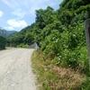 6/24 林道ソロツーリング!