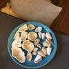 貝殻のオブジェ*