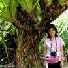 コスタリカ 背景はカルタゴの植物園