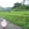 「通い稲作塾!」田んぼは子どもにとって最高の遊び&学びの場
