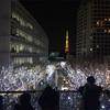 【Roppongi Hills Artelligent Christmas 2016】六本木 けやき坂のイルミネーション