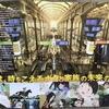 映画「未来のミライ」に鉄道のミライを想う