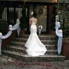 世界一美しい花嫁