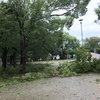 強烈な台風でした・・。