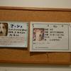 保護犬カフェ堺店 2019.2.8