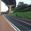 韓国で自転車レンタル  漢江サイクリング